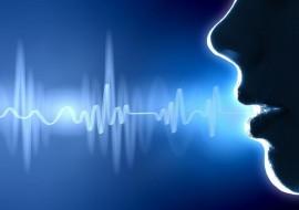 声纹识别系统-烟台声纹识别鉴定先导者